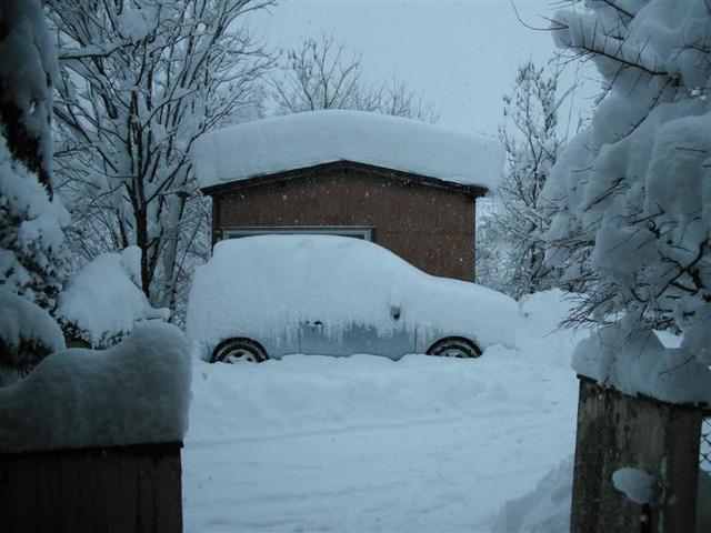 2011年1月17日大雪